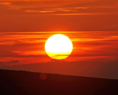 Sun-piodio - Thiet ke thuong hieu