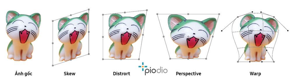 Transform-option-photoshop-details-piodio